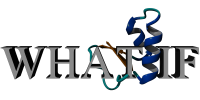 WHAT-IF logo